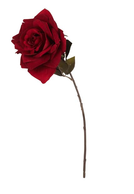 VELVET Rose rouge Long. 47 cm_velvet-rose-rouge-long--47-cm