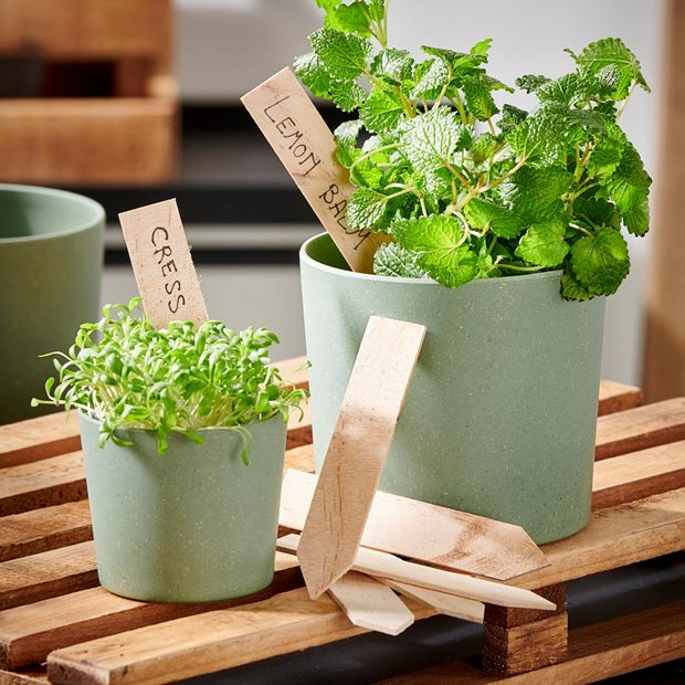 WOODY Marque-plantes set de 9 naturel H 0.3 x Larg. 2 x Long. 10.5 cm_woody-marque-plantes-set-de-9-naturel-h-0-3-x-larg--2-x-long--10-5-cm