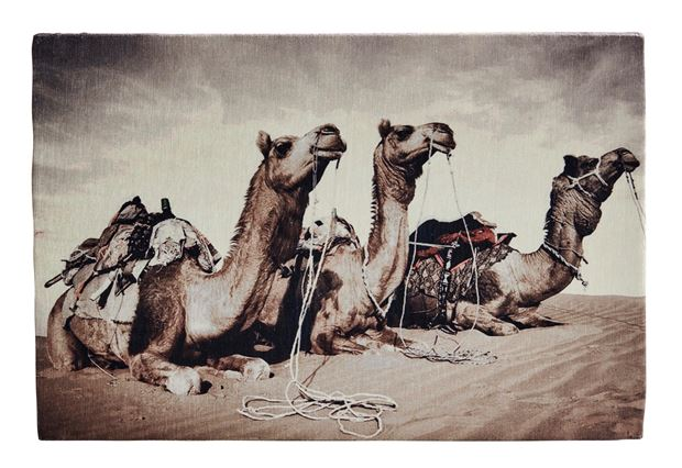 CAMEL Canvas marrone H 40 x W 60 cm_camel-canvas-marrone-h-40-x-w-60-cm