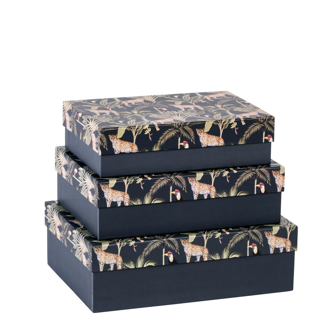 JUNGLE Doos multicolor H 6 x B 15 x D 21 cm_jungle-doos-multicolor-h-6-x-b-15-x-d-21-cm