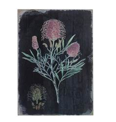 ASTERALES Decoración de pared negro, rosa A 42.5 x An. 29 x P 2.5 cm
