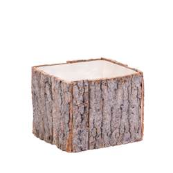 BARK Macetero natural A 13 x An. 13 x P 13 cm