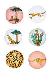 CHEETAH Aimants set de 6 diverses couleurs Ø 3 cm