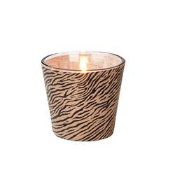 SAFARI Candela in vaso nero, marrone H 8 cm; Ø 9 cm