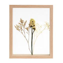 LIMONIUM Decoración de pared natural A 27 x An. 22 x P 4 cm